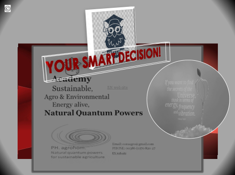 Natural Quantum Powers slika Akademija motiv s sovo - OUR CURRENT OFFER IN OUR ONLINE SHOP