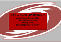 Slika2 siva osnova rdeč logo 200x140 - CALL TO SUBSCRIBE FOR SAE – ENQP Academy! We start with first Modul on 7th of January 2019! Now is time to apply and save 1.009,50€! Only until 29th of November, 2018! APPLY NOW!