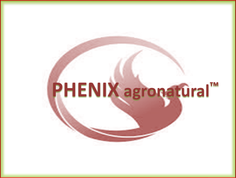 PHENIX agronatural TM logotip blagovna znamka - Attraction, which brings many sustainable, high advanced solutions possibilities:  Advanced and sustainable - necessary production of Healthy Agricultural Crops! Regenerative Agriculture! Technical possibilities for sustainable Agro-Spraying of Agro-growing Surfaces, from Air - by Drones...