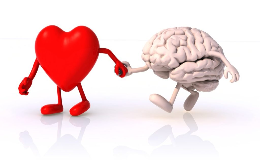 heart brain 1 1024x640 - NEW RECORD - Schuman frequency reached peak at 158 Hz. Discover this as huge, great opportunity for awakening - activating, boosting and achieving a consistent level of your Heart Coherence Vibration