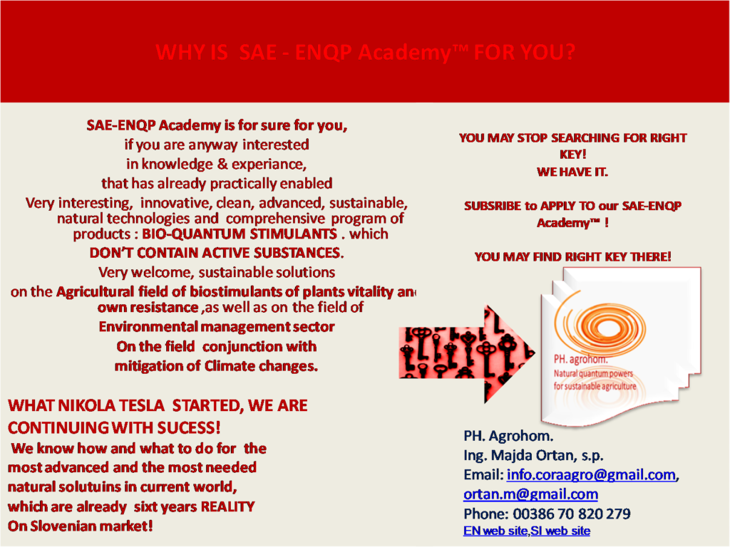 WHY IS SAE ENQO ACADEMY FOR YOU 1024x768 - Presentation of Director of the Company