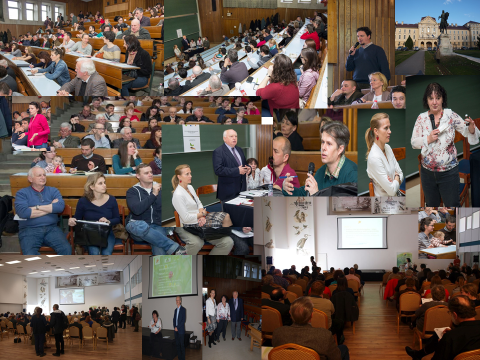 madžarska predavanja - Presentation of Director of the Company
