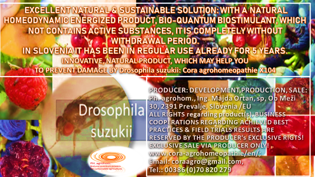 Drosophila suzukki www.cora agrohomeopathie.com  1 - In the background of NATURAL QUANTUM AGRICULTURE ...