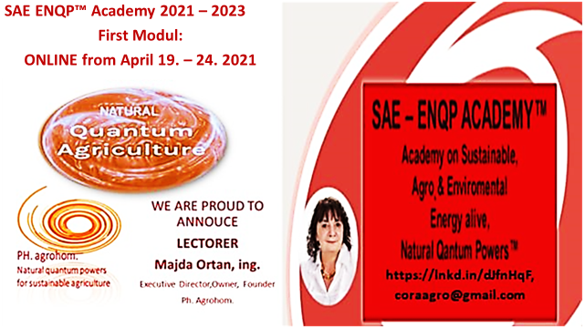 2 SAE ENQP TM Academy 2021 2023 First Modul April 19. 24. 2021 - SAE ENQP™ Academy 2021 - 2023:                           Enrolment for Attending!