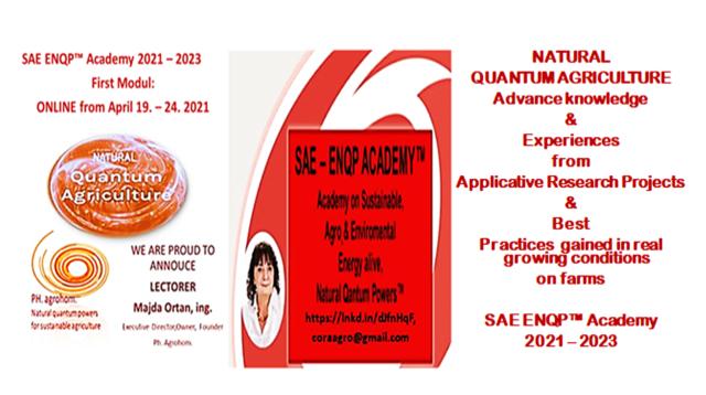 3 SAE ENQP TM Academy 2021 2023 First Modul April 19. 24. 2021 - SAE ENQP™ Academy 2021 - 2023:                           Enrolment for Attending!