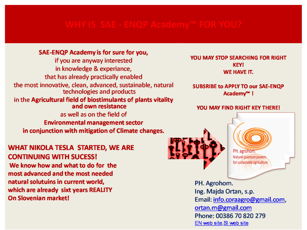 WHY IS SAE ENQP TM Academy for you 1024x768 - SAE ENQP™ Academy 2021 - 2023:                           Enrolment for Attending!